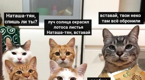 «Два года с друзьями не виделся, все карантин»: Мемы, которые прокачают твое настроение на всю неделю