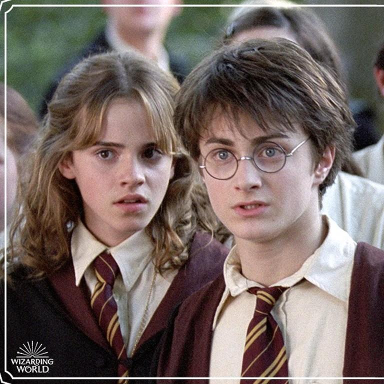 Сагу о Гарри Поттере предложили включить в школьную программу1